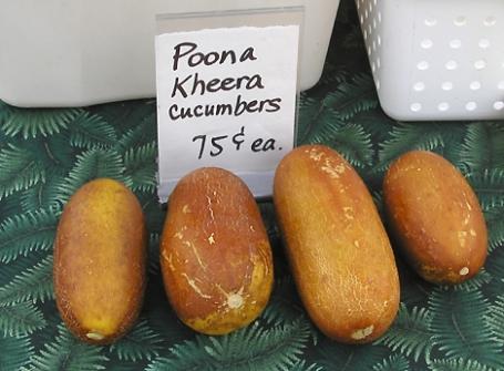 poona kheera